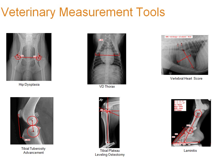 is4-vet-measurement-tools